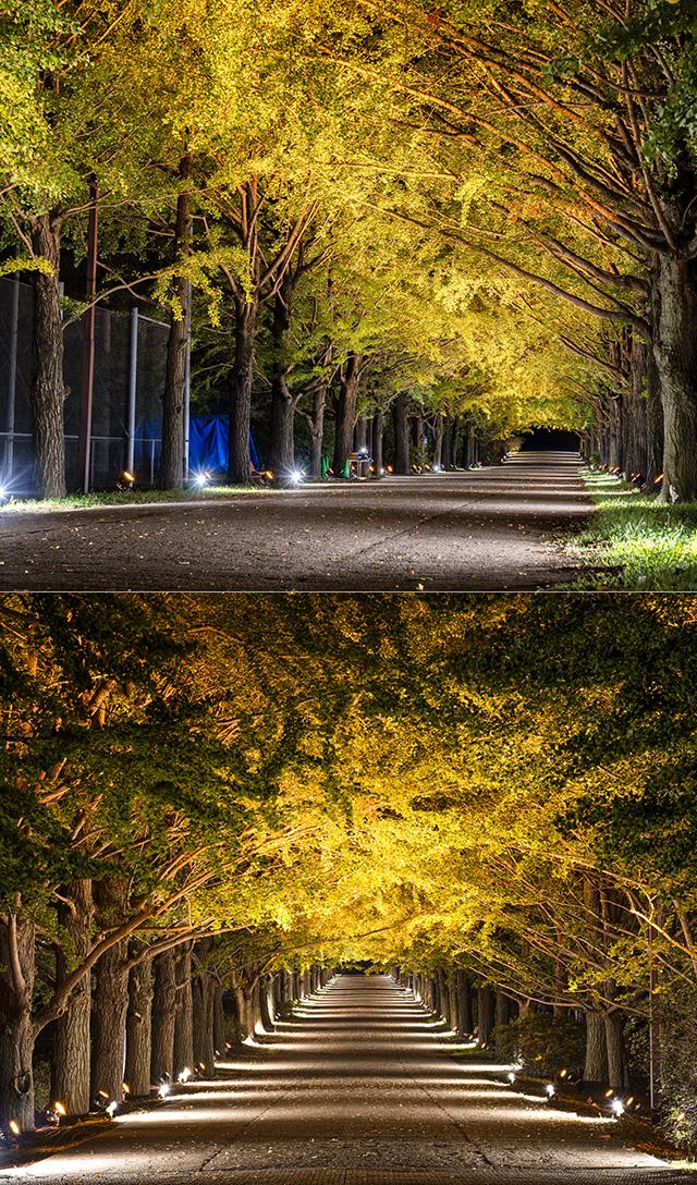 記念 公園 昭和